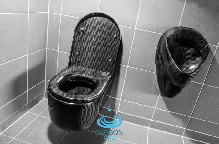 Carbon Toilet